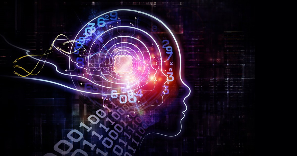 Brain plasticity (or neuroplasticity): what is it?