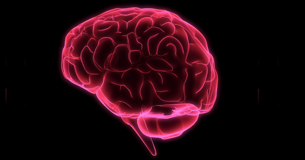 The 9 dopaminergic pathways of the brain: types, functions and associated disorders